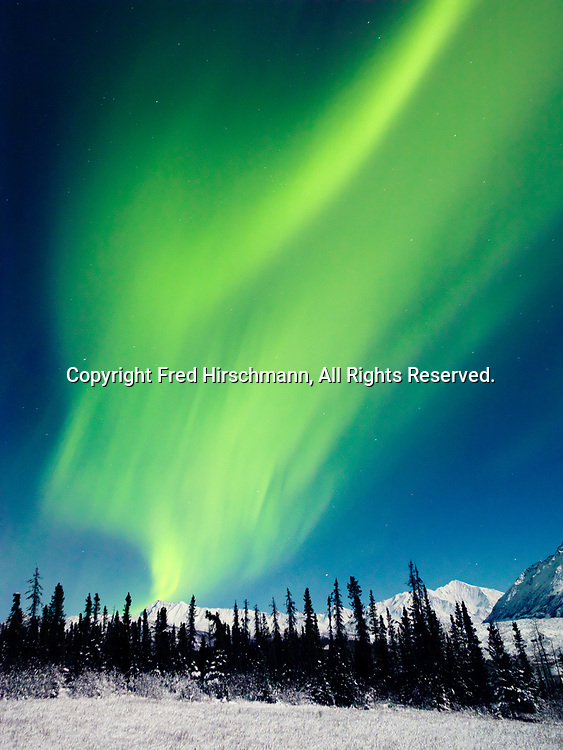 Green Northern Lights during the full moon on the night of January 4, 2015, Glacier View, Alaska.