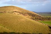 Chalk scarp slope Knapp Hill, Vale of Pewsey, Alton Priors, Wiltshire, England, UK