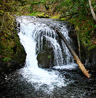 This is Little Multnomah Falls that drops into the splash pool right at the head of the upper portion of famous Multnomah Falls.
