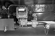 110/06/1963<br /> 06/10/1963<br /> 10 June 1963<br /> Castrol Bedford J Type oil tanker at Castrol (Ireland) Ltd., Terenure, Dublin.