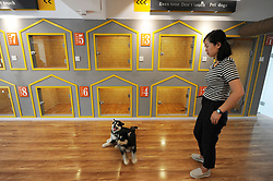 June 15, 2017 - Qingdao, Qingdao, China - Qingdao, CHINA-June 15 2017: (EDITORIAL USE ONLY. CHINA OUT)..The B.C Pet Hotel providing pet care service opens in Qingdao, east China's Shandong Province, June 15th, 2017. Owners of the pets can check the situation through cell phone at any time after they send pets to the pet hotel for foster service. (Credit Image: © SIPA Asia via ZUMA Wire)