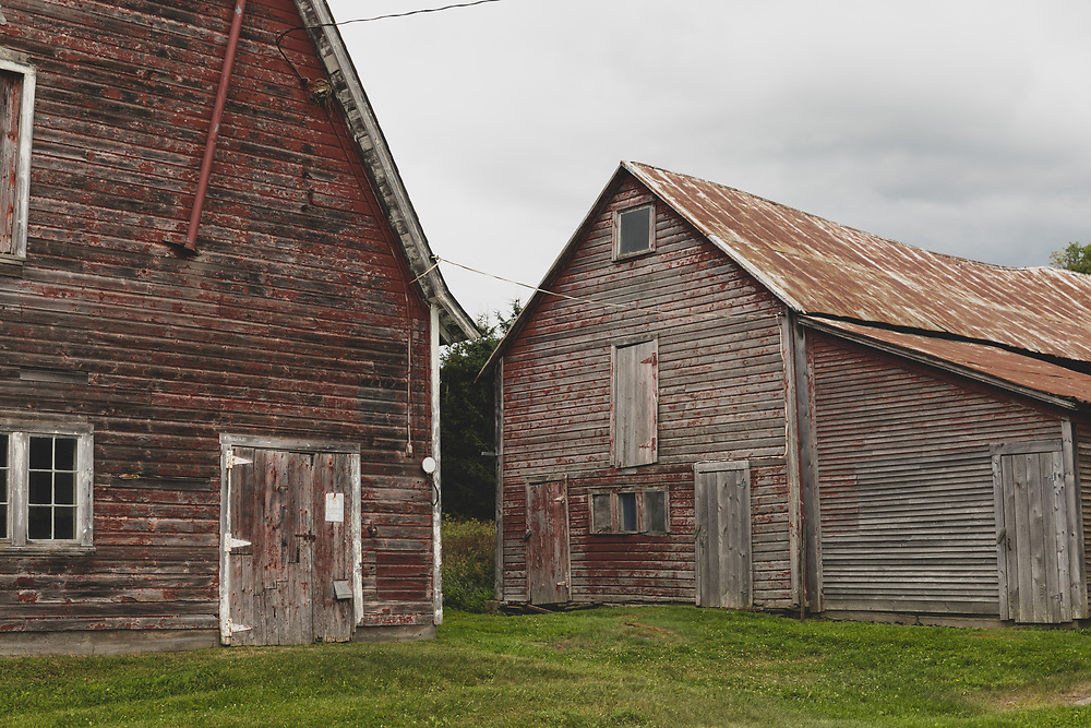 A pair of old red barns nestled in the rural farmland of Plainfield, Vermont.