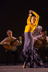 """© Licensed to London News Pictures. 23/06/2015. London, UK. Charo Espino performing Alegría. Paco Peña Dance Company perform the UK premiere of """"Flamencura"""" at Sadler's Wells Theatre. The flamenco show runs from 20 to 28 June 2015 and features six musicians and three dancers.Photo credit: Bettina Strenske/LNP"""