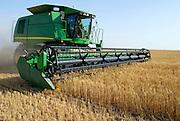 Israel, Negev Desert, combine harvester wheat Harvesting close up, May 2007