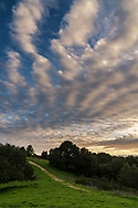 Clouds over the Briones Crest trail, Briones Regional Park, Contra Costa County, California