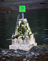 Route Marker 39 in Wrangell Narrows. Image taken with a Nikon D300 camera and 70-300 mm VR lens.