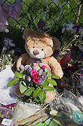 Teddy bear holding bouquet of flowers at the Prince memorial fence. Paisley Park Studios Chanhassen Minnesota MN USA
