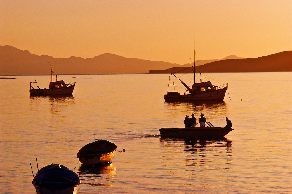 A group of boats sailing by sunset.