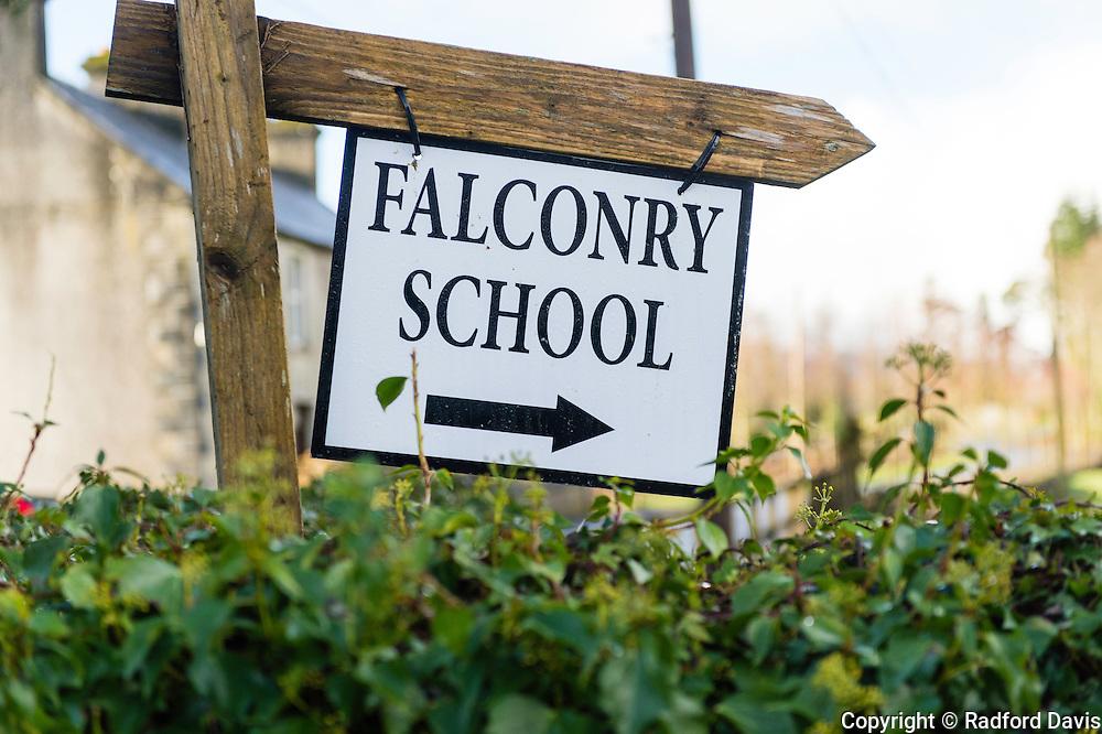 Falconry school sign, Ireland
