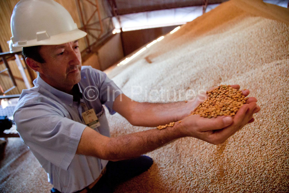 Man showing a huge pile of Soya in a grain storage barn on a large soya and maize farm, this warehouse holds approximately 22,000 tonnes of grain. Brazil is the largest producer of Sugar and Beef, then second for Soya and third for Maize. Many of the farms are in the state of Mato Grosso and Mato Grosso do Sul, they are often enournmous, stretching for miles kilometres. A lot of the crops are processed on site and kept in large warehouses or silos.