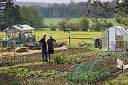 Gardeners chat beside their allotments, Chadlington, Oxfordshire, United Kingdom