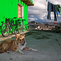 Our guesthouse in Ushuaia, guarded by a Rough Collie suffering from hyperactivity most of the time :-)