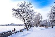 ÖSTERSUND 20210109<br /> Fotopromenad i Badhusparken, Östersund<br /> <br /> Foto: Per Danielsson/Projekt.P