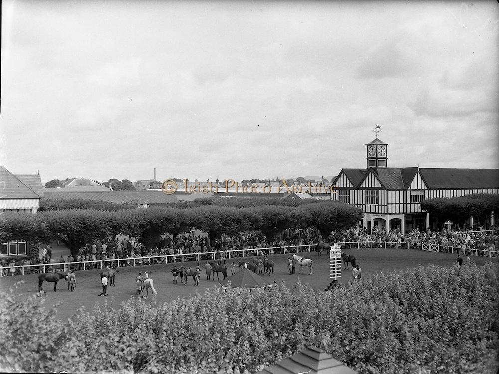 R.D.S. Horse Show, Tuesday, Prince and Princess de Ligne of Belgium at R.D.S.<br /> 08.08.1961
