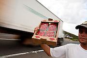 Cambui_MG, Brasil...Vendedor de morangos na BR 381 in Cambui...A strawberries seller in the BR 381 in Cambui...Foto: LEO DRUMOND / NITRO....