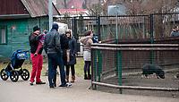 30.12.2013 Bialystok Bialostocki Akcent ZOO przeszedl gruntowna modernizacje. Nowe wybiegi dostaly niedzwiedzie brunatne, wilki i inne drobne zwierzeta. Nowoscia  w ZOO jest m.in wybieg dla zbika N/z zwiedzajacy fot Michal Kosc / AGENCJA WSCHOD