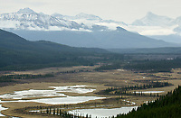 Wilmore Wilderness - View to plain near Rock Lake, Alberta, Canada   Photo: Peter Llewellyn