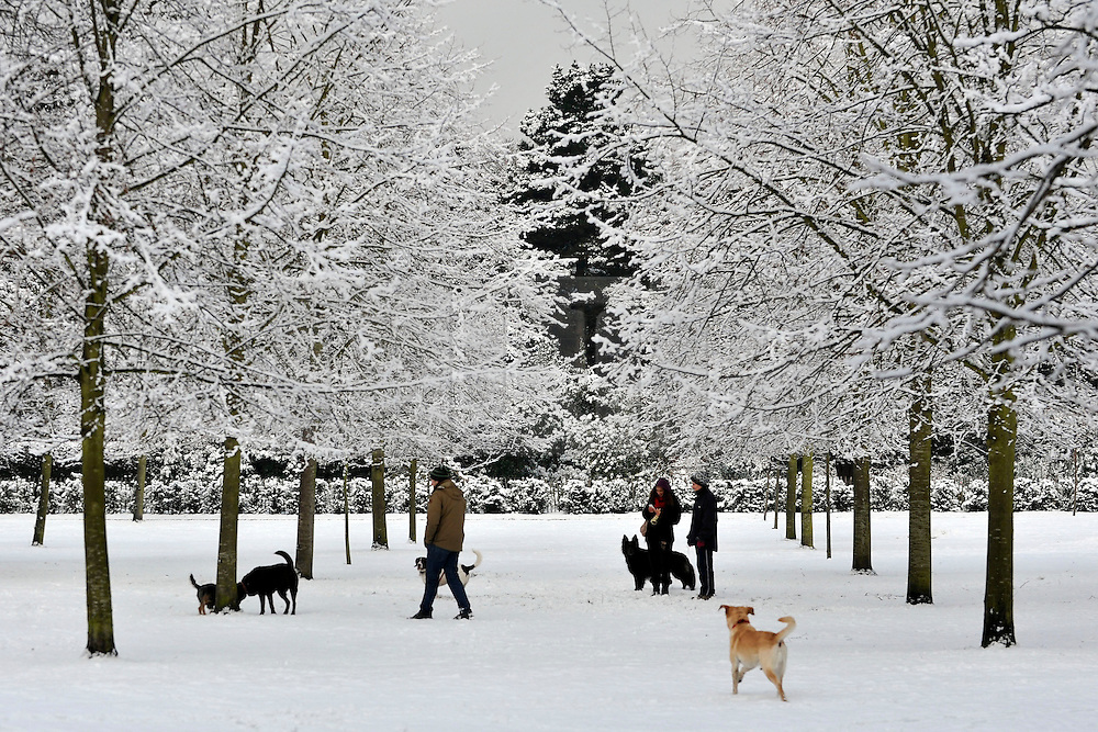 © Licensed to London News Pictures. 10/02/2012, London, UK. People enjoy the snow in the grounds of Chiswick House in West London today 10 February 2012. Chiswick House, undergoing restoration,  is the first and one of the finest examples of neo-Palladian design in England.  Inspired by the architecture of ancient Rome and 16th Century Italy, the third Earl of Burlington built the house as a homage to Renaissance architect Palladio.The cold weather across the UK is set to continue over the weekend.  Photo credit : Stephen Simpson/LNP