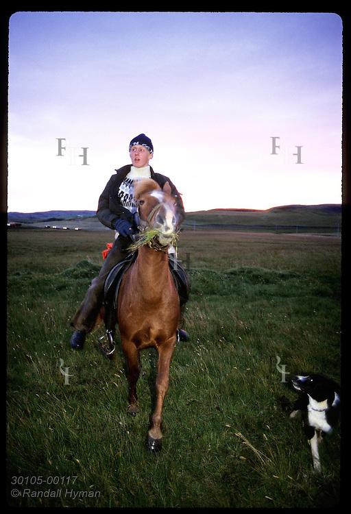 David Oskarsson, 15, rides horse toward camera as dog follows in evening at Kirkjubaejarklaustur. Iceland