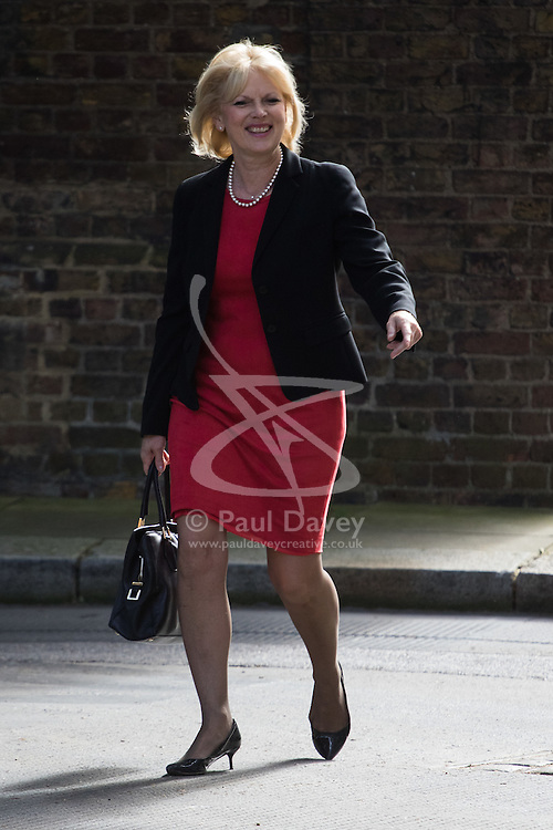 Small Business Minister Anna Soubry arrives at Prime Minister David Cameron's final cabinet meeting following Theresa May's anticipated takeover as Leader of the Conservative Party and Prime Minister