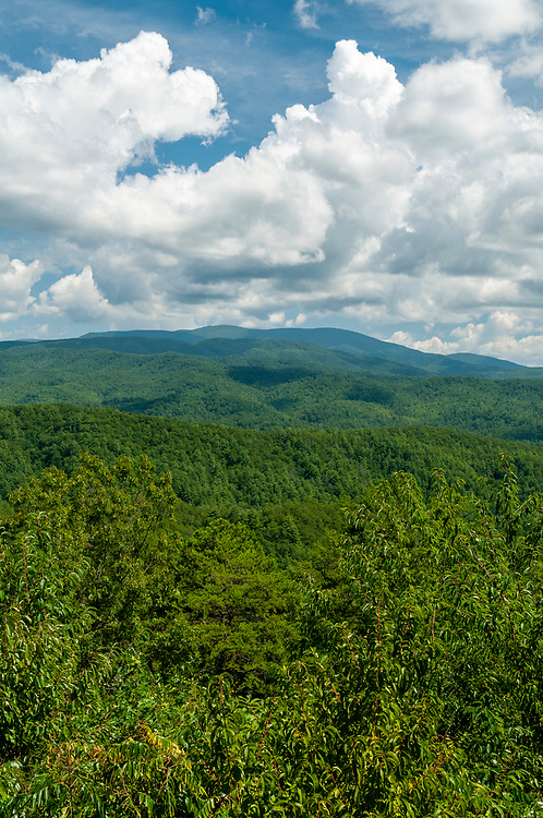 View of Parson Bald (right) from the Parson Bald Overlook on the Foothills Parkway in Great Smoky Mountains National Park in Walland, Tennessee on Wednesday, August 12, 2020. Copyright 2020 Jason Barnette