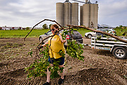 """12 AUGUST 2020 - SLATER, IOWA: DEBBIE ALLEY empties debris from the storm Monday out of her trailer at the dump site in Slater. Destroyed grain silos at Heartland Cooperative are in the background. According to Iowa Governor Kim Reynolds, the storm damaged 10 million acres of corn and soybeans in Iowa, about 1 one-third of Iowa's 32 million acres of agricultural land. Justin Glisan, Iowa's state meteorologist, said the storm Monday, Aug. 10, lasted 14 hours and traveled 770 miles through the Midwest before losing strength in Ohio. The storm was a seldom seen """"derecho"""" that packed straight line winds of nearly 100MPH. The storm pummelled Midwestern states from Nebraska to Ohio.    PHOTO BY JACK KURTZ"""