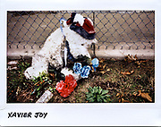 A memorial for Xavier Joy, 23-year-old, in a parking lot in the 6200 block of South Ingleside Avenue in Chicago, in this photo taken November 3, 2017. Joy was shot several times and died June 8, 2017.