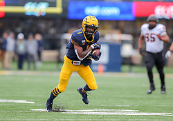 Nov 23, 2019; Morgantown, WV, USA; West Virginia Mountaineers wide receiver T.J. Simmons (1) catches a pass during the first quarter against the Oklahoma State Cowboys at Mountaineer Field at Milan Puskar Stadium. Mandatory Credit: Ben Queen-USA TODAY Sports