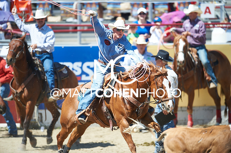 Team roper Doyle Hoskins of Chualar, CA competes at the Redding Rodeo in Redding, CA.<br /> <br /> <br /> UNEDITED LOW-RES PREVIEW<br /> <br /> <br /> File shown may be an unedited low resolution version used as a proof only. All prints are 100% guaranteed for quality. Sizes 8x10+ come with a version for personal social media. I am currently not selling downloads for commercial/brand use.