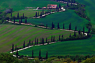 the most famous zig-zagging road and Cypress trees in the world is at La Foce, a small hamlet not far from Montepulciano in Orcia Valley, Tuscany