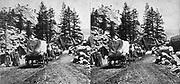 Emigrant Train, Strawberry Valley, Sierra Nevada Mountain California. Emigrants going east. 1864-1905