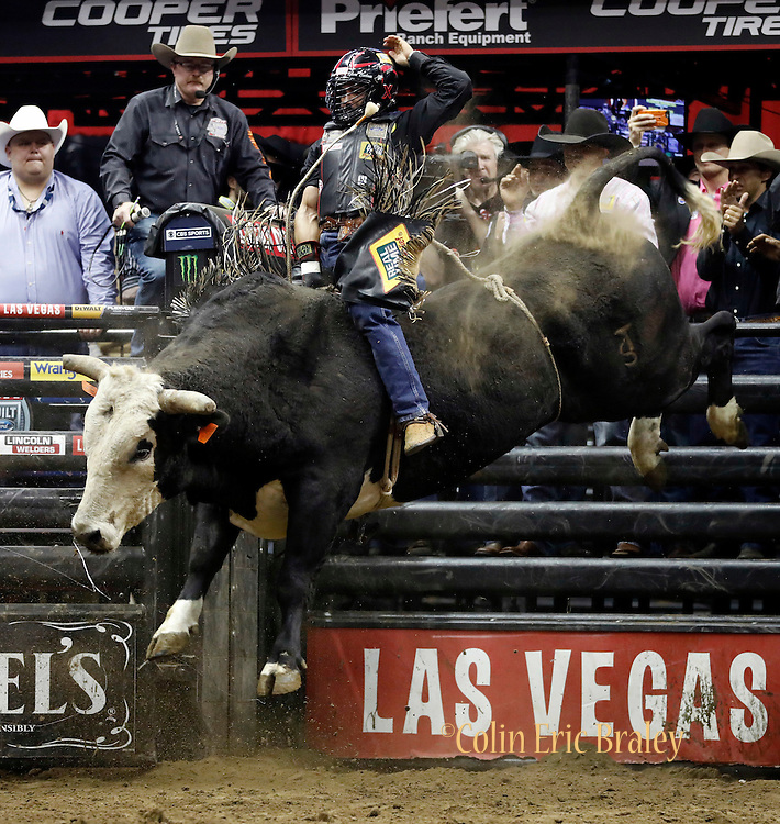 Rubens Barbosa of Brazil rides Pearl Harbor during the Professional Bull Riders, Built Ford Tough Series at the Sprint Center, Saturday, Feb. 11, 2017, in Kansas City, Mo. (AP Photo/Colin E. Braley)