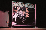 Photos of the band Wild Tiger performing at the Pageant in St. Louis on February 4, 2011.