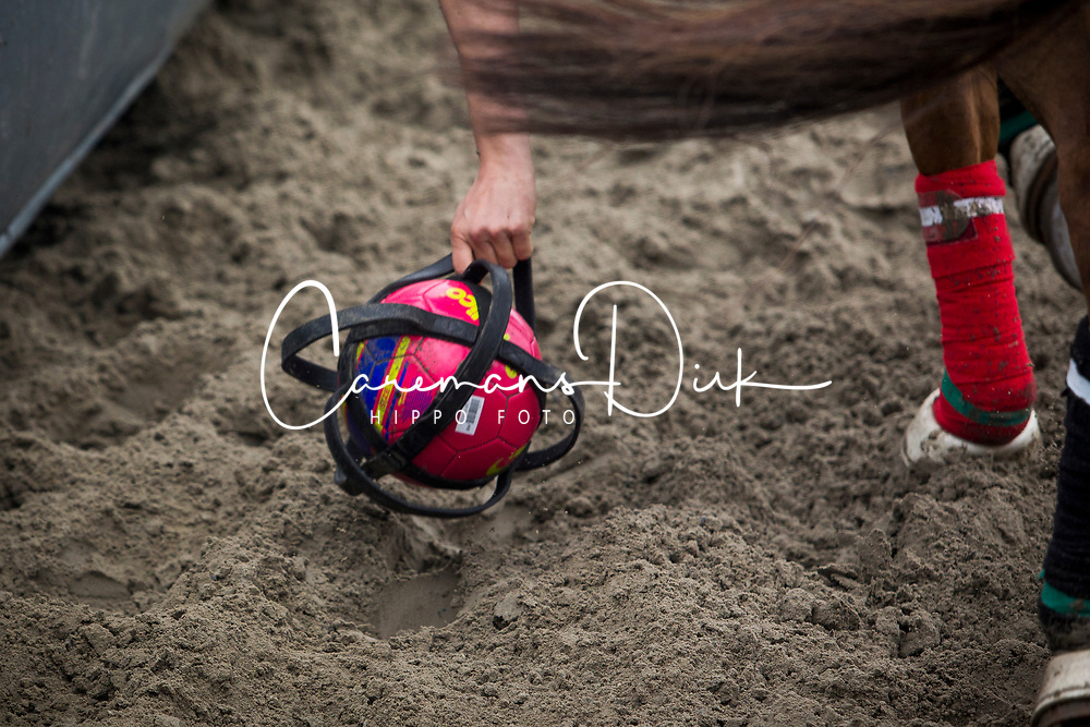 Augustyns Michael, BEL, Petite Biche, <br /> BK Horseball 2018<br /> © Sharon Vandeput<br /> 13:51:20