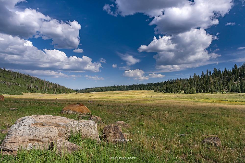 A mountain meadow along Utah Highway 14 outside of Cedar Breaks National Monument