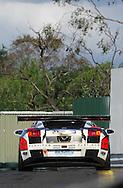 Mark Eddy .Lamborghini Gallardo.Motorsport/2008 Shannon Nationals.Australian GT Championship - Sandown GT Classic.Sandown International Raceway, Melbourne, Victoria.30th November 2008.(C) Joel Strickland Photographics.