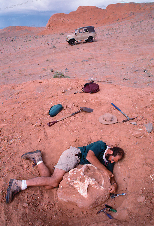 Luis Chiappe Excavates a Protoceratops skull at Ukhaa Tolgod in the Gobi Desert in Mongolia.