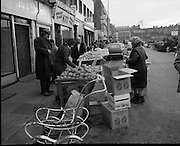 Moore Street, Dublin.      (J97)..1975..23.12.1975..12.23.1975..23rd December 1975..For well over a hundred years Moore Street has served the citizens of Dublin. The longest running open air fruit and vegatable market offers value for money,particularly to those where money is in short supply. Predominately a fruit and veg market there are several traders who sell fish and seasonal goods, as illustrated by the photographs showing turkeys and holly wreaths being sold on the run up to Christmas..Image shows a trader restocking her stall while customers check the vegatables on offer. In the background,the last of the Christmas trees are stacked for sale.