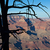 USA, Arizona, Grand Canyon. The Grand Canyon, a UNESCO World Heritage Site, view from the south rim.