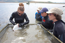 Katie Kent Showing Bat Ray To Earthwatch Team