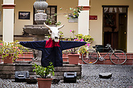 A scene of a cattle skull dressed up and ready to party at the cultural museum in Cotacachi, Ecuador