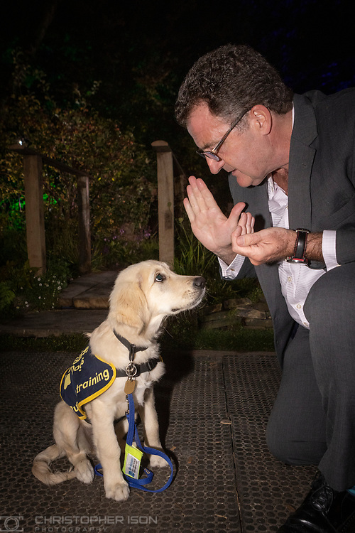 Former RAF pilot and Iraq hostage John Nichol with guide dog puppy Chelsea at RHS Chelsea Flower Show.<br /> Picture date: Tuesday September 21, 2021.<br /> Photograph by Christopher Ison ©<br /> 07544044177<br /> chris@christopherison.com<br /> www.christopherison.com<br /> <br /> IMPORTANT NOTE REGARDING IMAGE LICENCING FOR THIS PHOTOGRAPH: This image is supplied to the client under the terms previously agree. No sales are permitted unless expressly agreed in writing by the photographer.