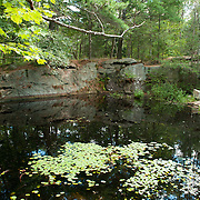 Ravenswood Park, Gloucester, MA