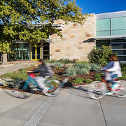 Siegfried- UC Davis International Center
