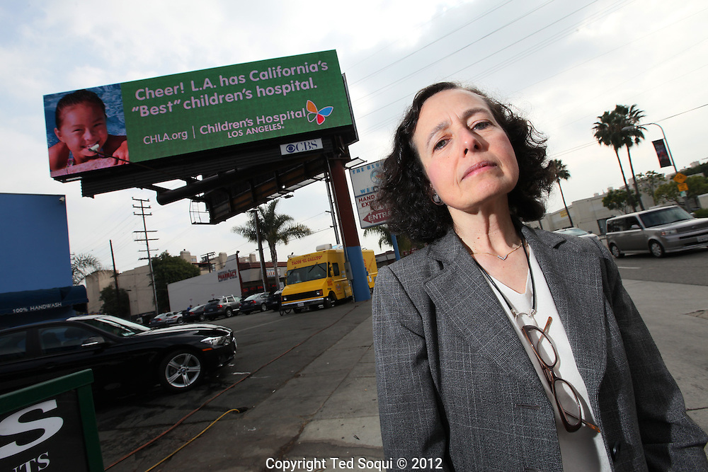 Barbara Broide at Santa Monica Blvd. and Westwood wit an electronic billboard behind her.