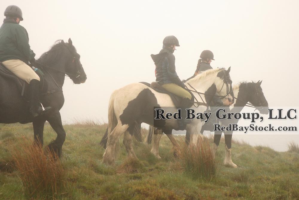 Calliaghstown, Riding, Centre, Rathcoole, Ireland, trail, ride, Wicklow, Mountains, Cross, Country, International, mist, fog, group, dublin