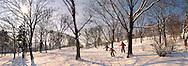 Városliget. City park in the snow - Budapest Hungary
