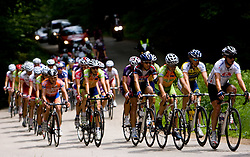 Peloton at Slovenian National Championships in Road cycling, 178 km, on June 28 2009, in Mirna Pec, Slovenia. (Photo by Vid Ponikvar / Sportida)