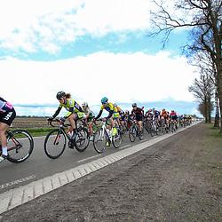 08-04-2016: Wielrennen: Energiewachttour vrouwen: Stadskanaal <br /> The third stage of the Energiewachttour for women Musselkanaal-Stadskanaal. Peloton chasing