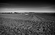 Cambrai WW1 Battlefield, 1917, France. Mouvres CWGC Cemetery on Canal du Nord near Cambrai. February 2014<br /> <br /> Moeuvres remained in German hands during the Battle of Cambrai, 1917, in spite of three days of desperate attack by the 36th (Ulster) Division. It was partly taken by the 57th <br /> (West Lancashire) Division on 11 September 1918 and cleared by the 52nd (Lowland) Division on the 19th.<br /> <br /> Moeuvres British Cemetery contains 107 Commonwealth burials of the First World War. 13 of the burials are unidentified and special memorials are erected to four casualties known or believed to be buried among them. The cemetery also contains four German graves.<br /> <br /> The cemetery was designed by G R Goldsmith.